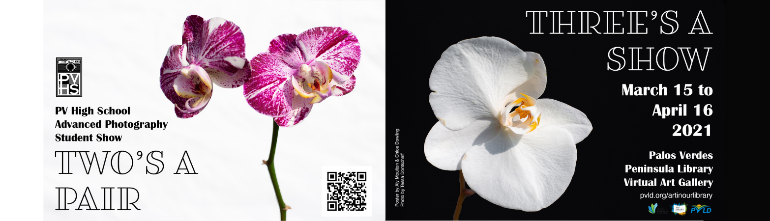 purple orchid, white background on left. white orchid, black background on right. PVHS Advanced Photography Student Show: Two's a Pair, Three's a Show